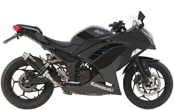 Ninja 300 & Z300