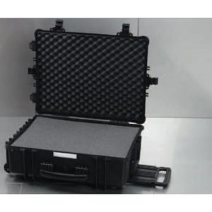 Solid Case With Foam - Large