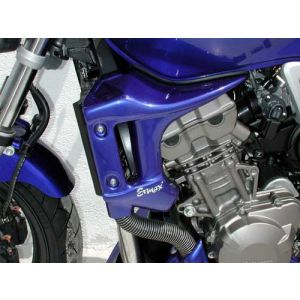 Ermax Scoop for Honda CB900 '02-'07