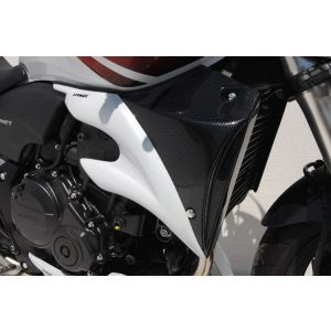 Ermax Scoop (Carbon Fiber) for Honda CB600 Hornet '07-'10