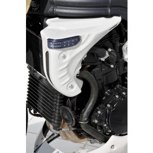 Ermax Scoop (with turn signals) for Triumph Speed Triple 1050 '05-'07