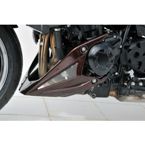 Ermax Belly Pan for Kawasaki Z1000 10-13